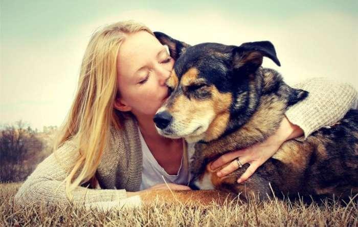 Savjeti stručnjaka: Psi ipak ne vole kad ih se češka po trbuhu