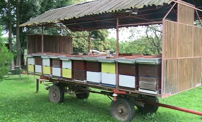 Košnice pune meda, ali cijene neće biti snižene