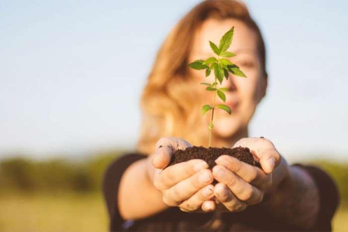 FDA odobrila prvi lijek na bazi marihuane