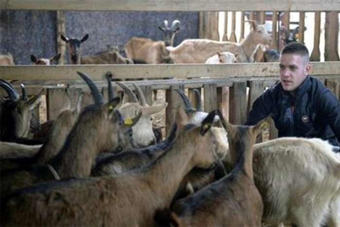 Fudbalski klub prodao 18 igrača da kupi 10 koza