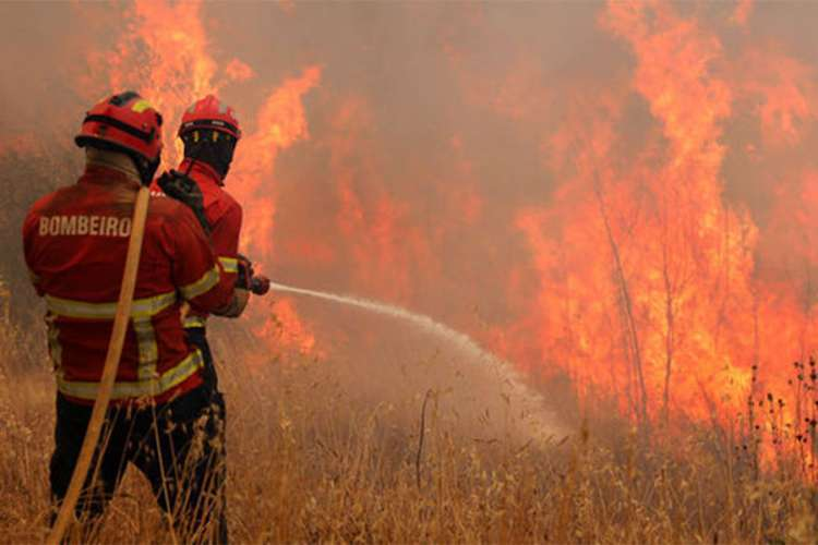 Kalifornija: Najmanje 29 ljudi poginulo u požarima