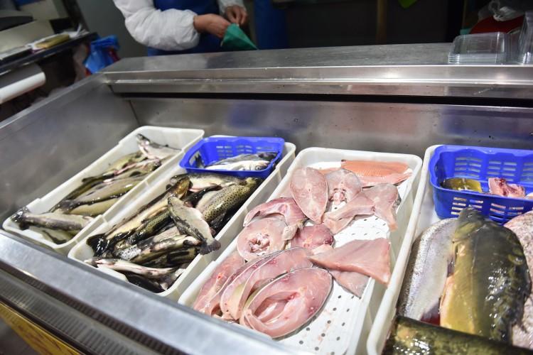 """Prnjavor: U ribarnici """"Kod Bože"""" najtraženija riba šaran i pastrmka (VIDEO)"""